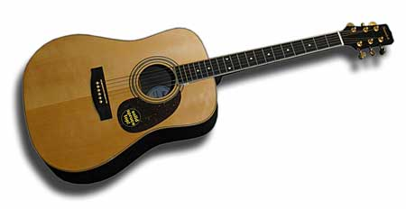 Samick Solid Spruce Top Acoustic Guitar