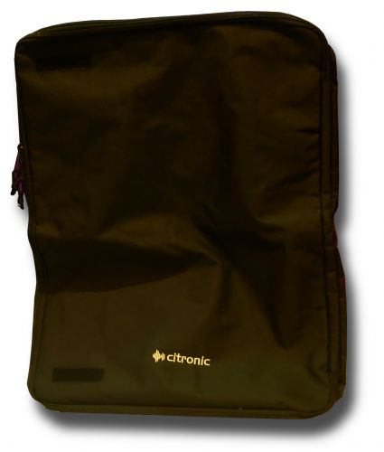 Speaker bags - padded 10in