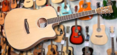Tanglewood Ovangkol Dreadnought Electro Acoustic
