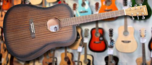 Tanglewood Crossroads Dreadnought Acoustic