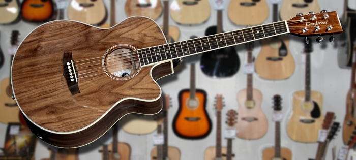 Tanglewood Deluxe Super Folk Exotic Dao